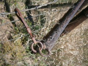 The snap on the lever can be attached at the top or next top wire.  Sometimes the cows rub on the gate and the snap slips off.