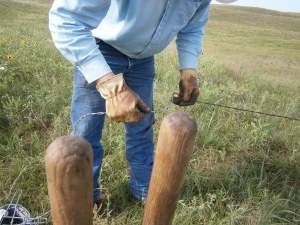 Newt patches new wire in where the bulls broke the top wire.  Those are my post hole digger handles in the front.