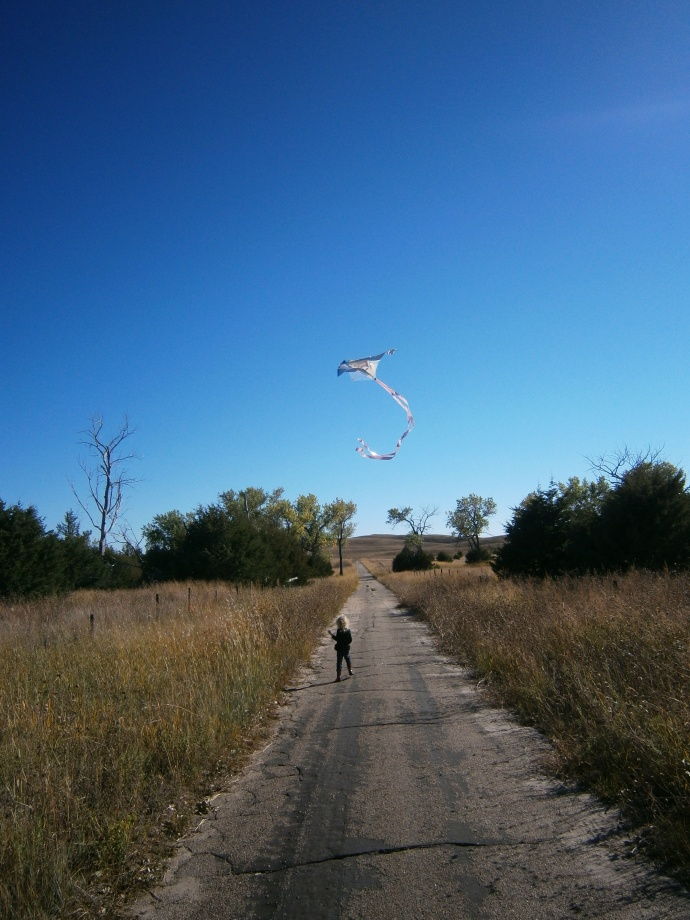 Kite down the road