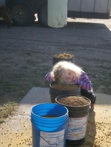 Load pellet buckets